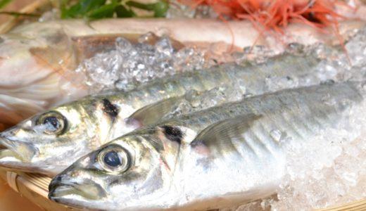 魚をさばく動画の魅力